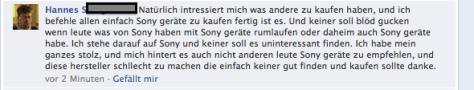 Fall Hannes Bild 5