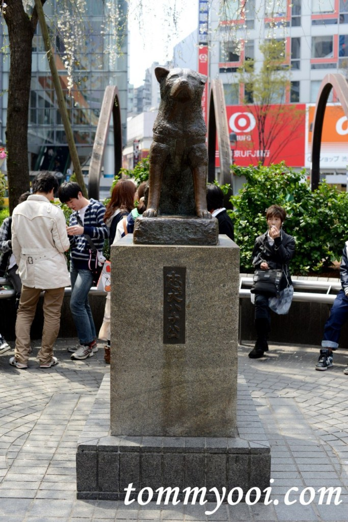 15 must visit tokyo attractions & travel guide - 15. Hachikō Statue