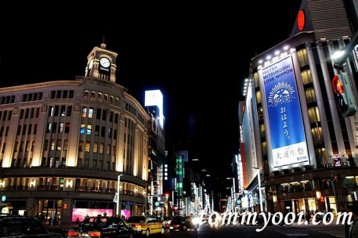 15 must visit tokyo attractions & travel guide - 8. Ginza
