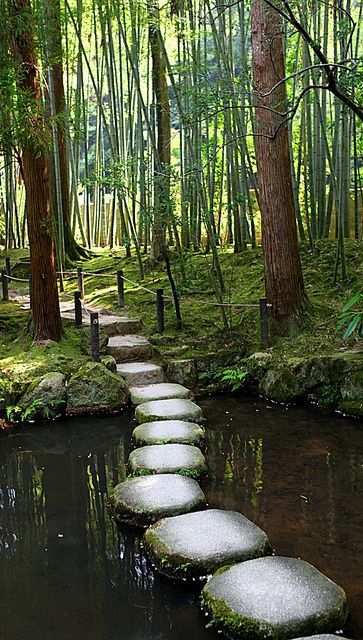Top Things That I Want To See In Kyoto I Will Visit Japan