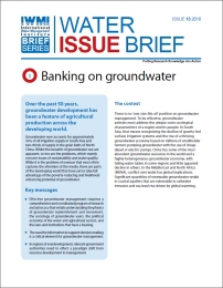 Water Issue Brief-13