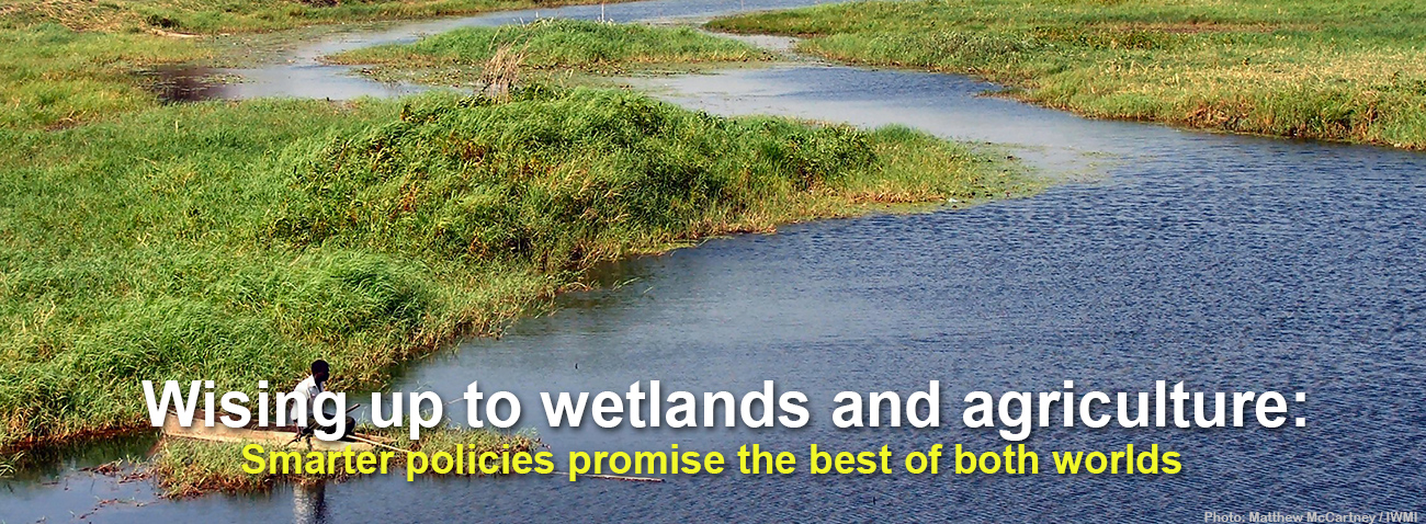 Wising-up-to-wetlands-and-agriculture