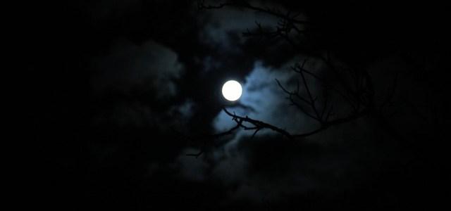 at-night-273573_640