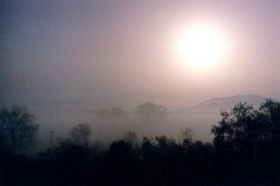 Landscape in Fog I