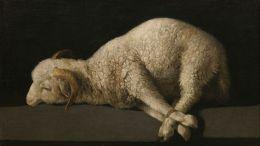 """Agnus Dei,"" by Francisco de Zurbarán. Oil on canvas. Credit: Wikimedia Commons"