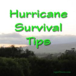 Hurricane Survival Tips