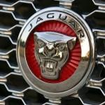 2016-jaguar-xj-l-portfolio-review-photos-jaguarforums-2