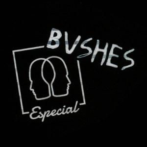 bushes_image