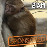 Biam  is currently being sponsored by Mr. Harry