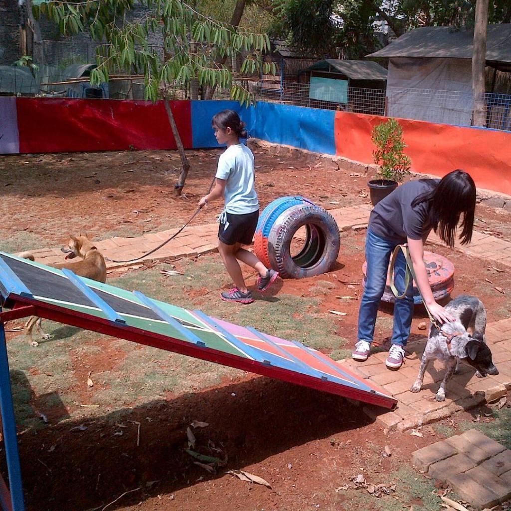 Students from JIS Jakarta International School volunteering today at ourhellip