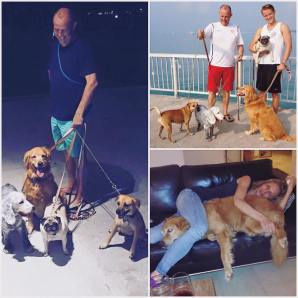JAAN staff visits 4 Jaan dogs that happily made the move from Jakarta to Singapore! Happy happy happy!