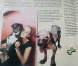 Toby and his story in the Jakarta Post!