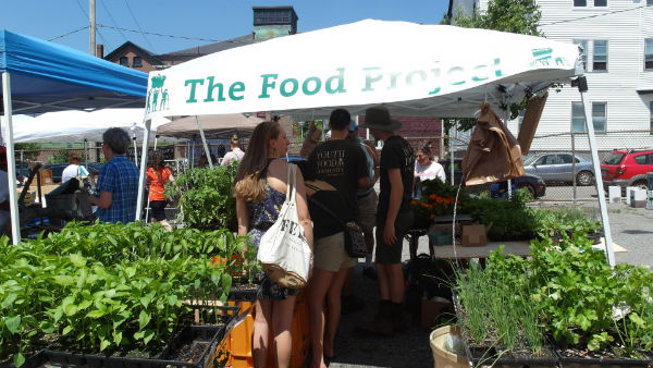 Egleston farmers market returns on saturday jamaica for Jamaica fish market