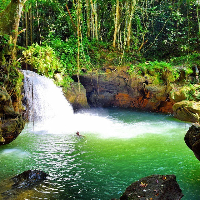 Best Places To Travel In September In The Caribbean: Breadnut Valley Falls In Maggotty, St. Elizabeth