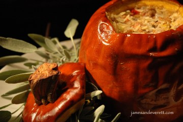 stuffed pumpkin 7