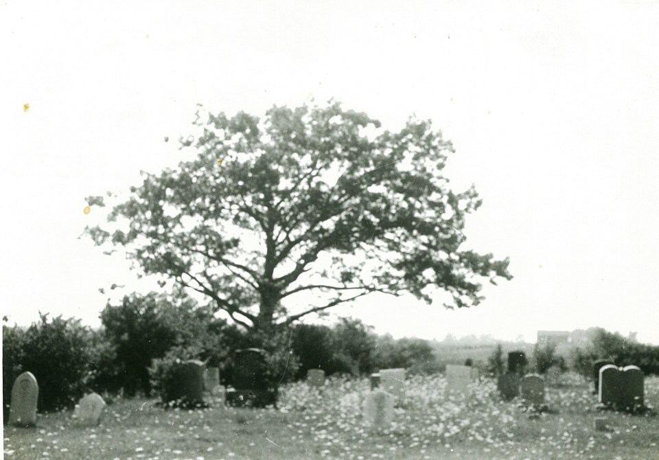 Bolden cemetery prior to 1975