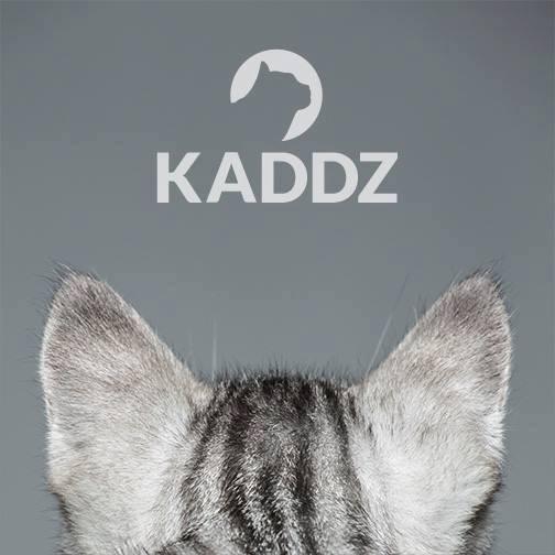 KADDZ tracking collars