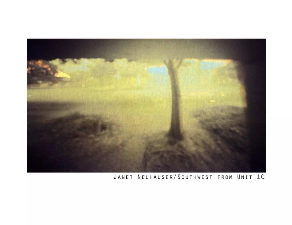 JanetNeuhauserAboveNorthEntrance copy