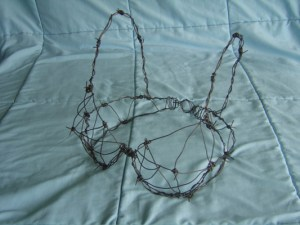 Barbed wire bra image courtesy of Zephyrbunny on Flickr