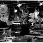 tsukiji_bw_006