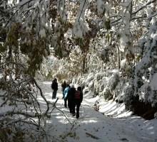 senderismo-montana-palentina-invierno