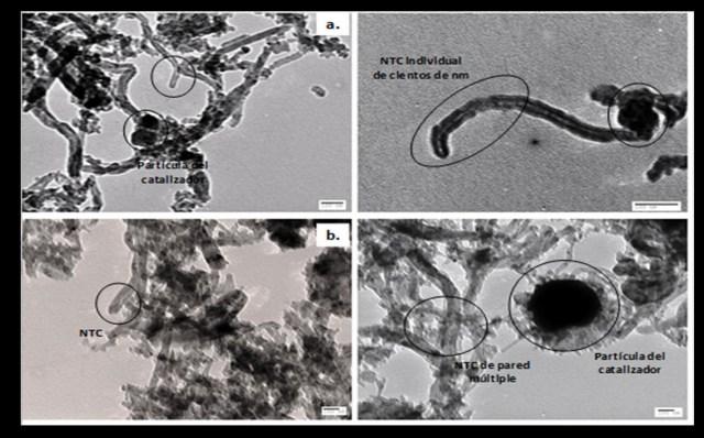 Así lucen los nanomateriales desarrollados por los investigadores javerianos. / Cortesía