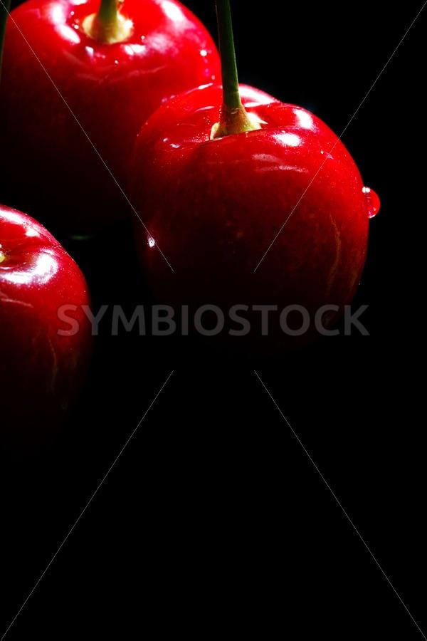 Juicy cherries - Jan Brons Stock Images
