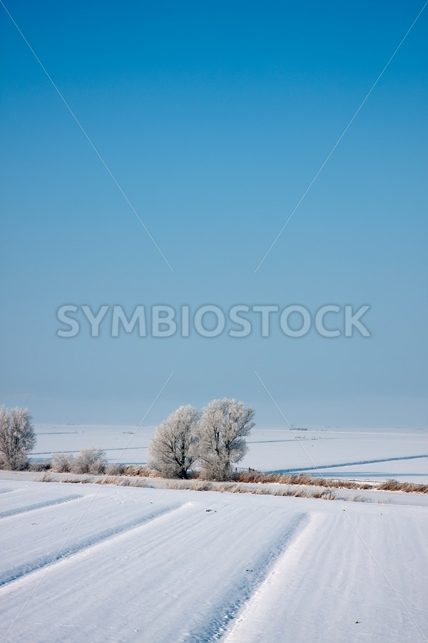 Snow covered landscape - Jan Brons Stock Images