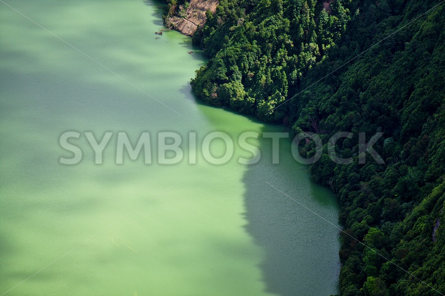 Green Lagoon - Jan Brons Stock Images