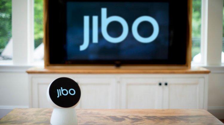 social-media-pic_jibo-w-jibo-background