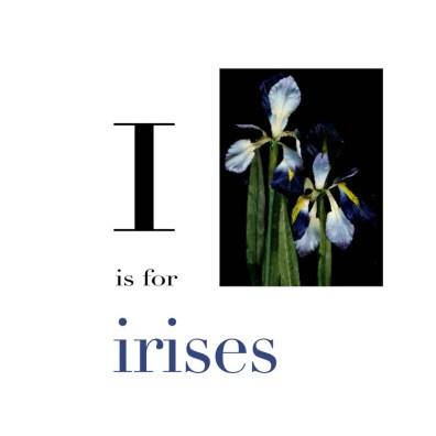 I is for Irises
