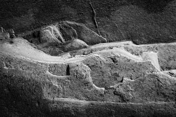 PORTFOLIO: Micro Landscapes