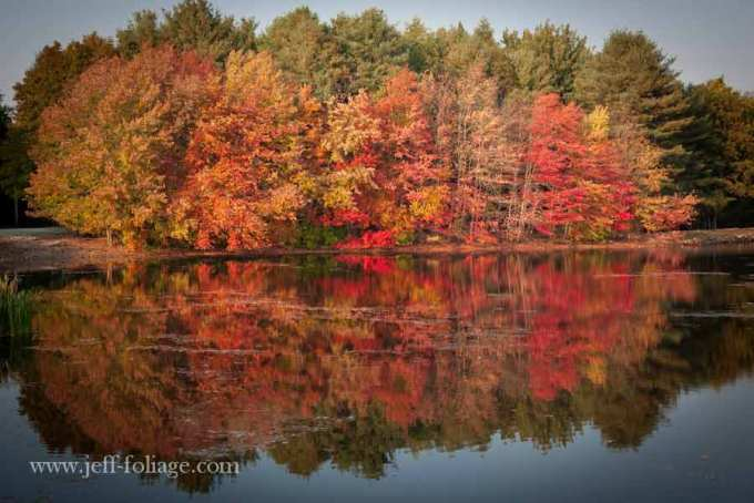 reflection of brilliant reds and oranges in a Rhode Island autumn