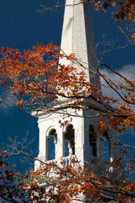 Vermont church steeple with maple tree