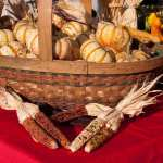 fall festivals harvest bounty