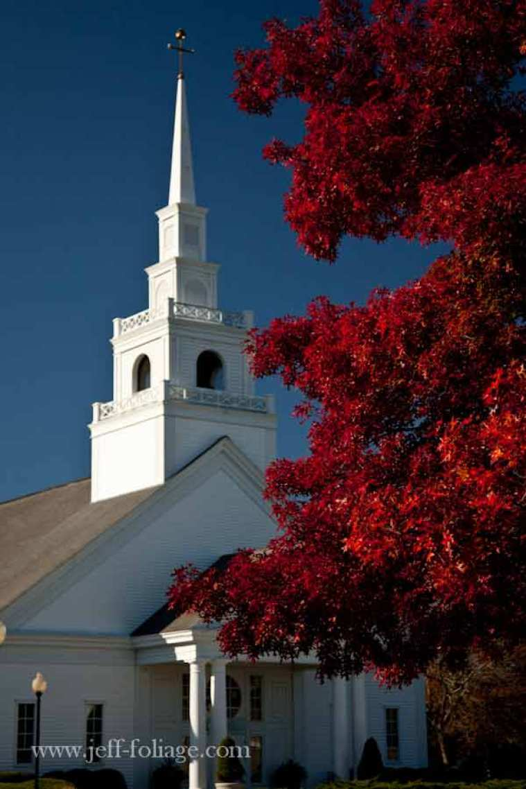 Cape cod autumn colors of a scarlet oak next to a white church