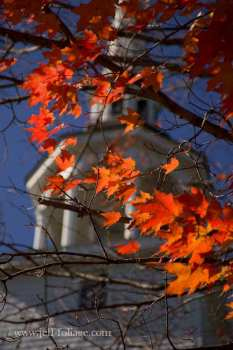 a Maple with a few orange and red leaves still on it allow you to see the churches steeple with the blue sky surrounding it