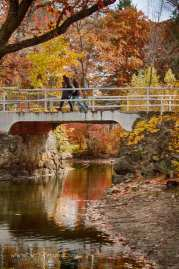 students walking from their dorm to their classes over a bridge with reflecting fall foliage