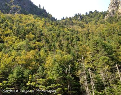 Dixville Notch is one of the northern most points in New Hampshire that I go looking for fall foliage colors in New England