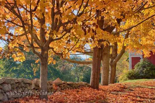 The fall colors over Adamsville Rhode Island
