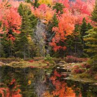 Location tips for great autumn reflections