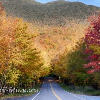 Fall Foliage Forecast 2016