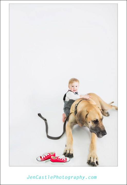 ©Jen Castle Photography, christmas, family portraits, baby boy, ten months, dogs, studio, Blue Buddha Studios