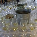 Gallo Chardonnay Wine Tour