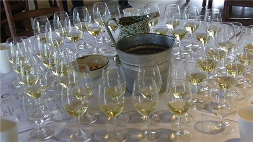 Gallo Chardonnay Wine Tour