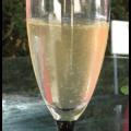 Bubbly Wine