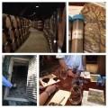 Stag's Leap Wine Cave Tour