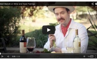 Mondavi Merlott Wine Video