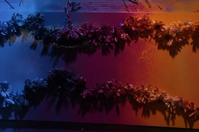 Jenna Citrus Art Rainbow Painting IMG_2319
