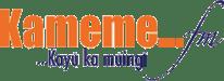 logo_kameme1